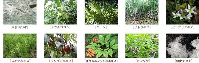 エキス類はすべて自生の植物を使用